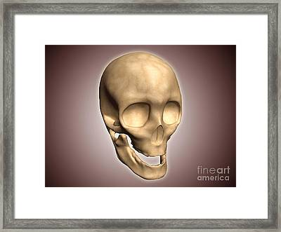 Conceptual Image Of Human Skull Framed Print by Stocktrek Images