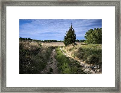 Country Road Framed Print by John Greim