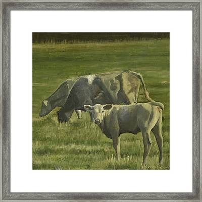 Framed Print featuring the painting 3 Cows In The Pasture by John Reynolds