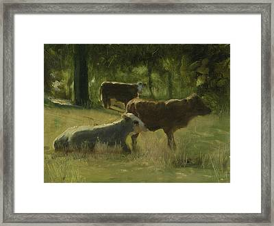 Framed Print featuring the painting Cows In The Sun by John Reynolds