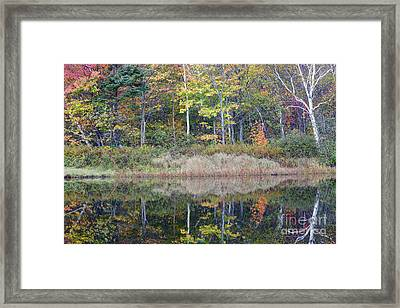 Crawford Notch State Park - White Mountains New Hampshire Usa Framed Print