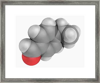 Cuminaldehyde Molecule Framed Print by Laguna Design/science Photo Library