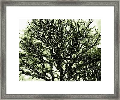 Dark Nature Framed Print
