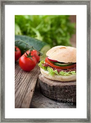 Delicious Sandwich Framed Print by Mythja  Photography