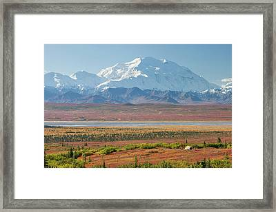 Denali National Park, Alaska, Mt Framed Print by Hugh Rose