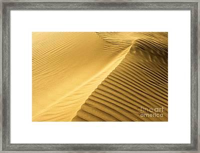 Desert Sand Dune Framed Print by Ezra Zahor
