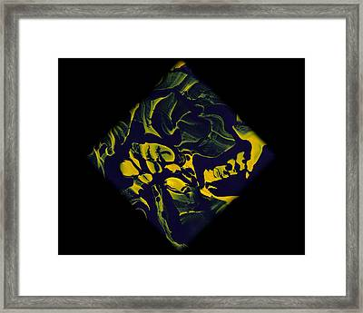 Diamond 208 Framed Print by J D Owen