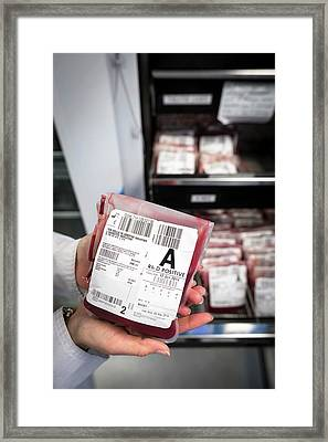 Donated Blood Framed Print by Aberration Films Ltd