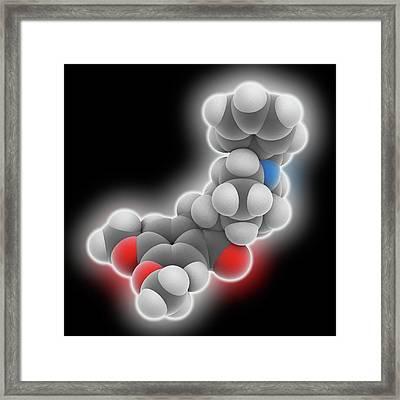 Donepezil Drug Molecule Framed Print by Laguna Design