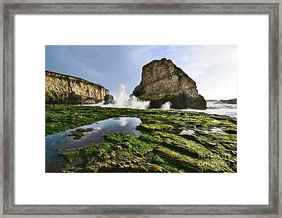 Dramatic View Of Shark Fin Cove In Santa Cruz California. Framed Print
