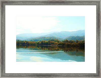 3 Ducks All In A Row Break Up The Reflection But Go With The Flow Framed Print by Chris  Hill
