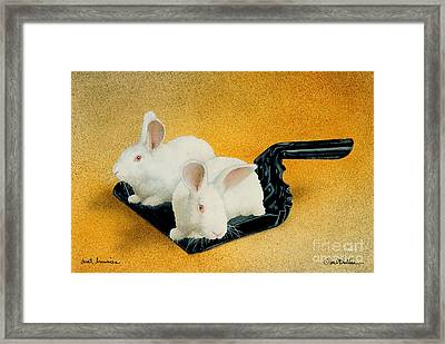 Dust Bunnies... Framed Print