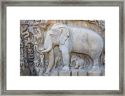 Elephant Sculpture At Mamallapuram  Framed Print by Robert Preston