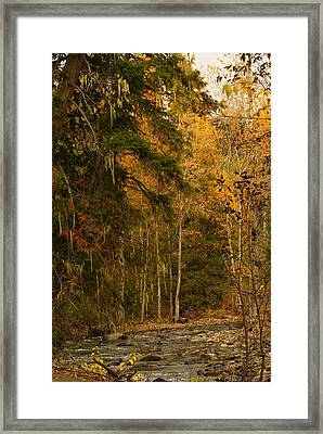 Fall At Sheep Creek Framed Print