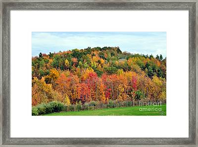Fall Foliage In New England Framed Print