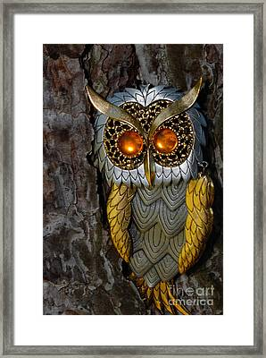 Faux Owl With Golden Eyes Framed Print