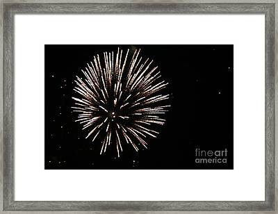Fire Works On The Fourth Of July  Framed Print by Larry Stolle