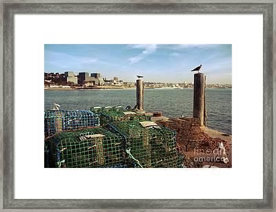 Fishing Traps Framed Print by Carlos Caetano