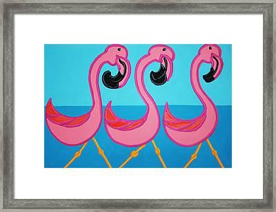 3 Flamingos  Framed Print by Matthew Brzostoski