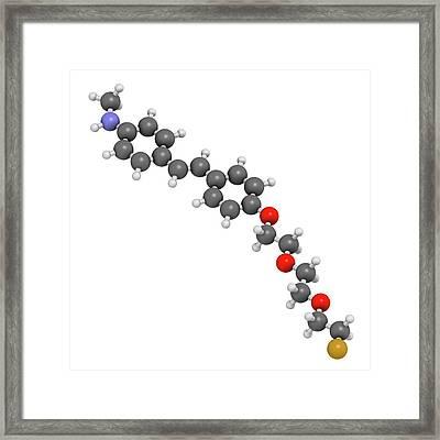 Florbetaben Radiopharmaceutical Molecule Framed Print by Molekuul