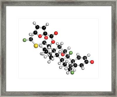 Fluticasone Furoate Corticosteroid Drug Framed Print by Molekuul