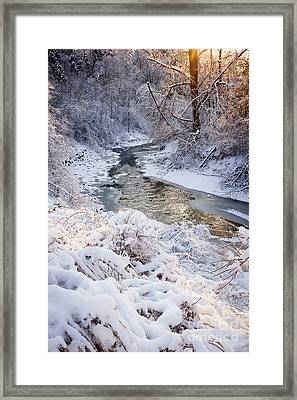 Forest Creek After Winter Storm Framed Print by Elena Elisseeva