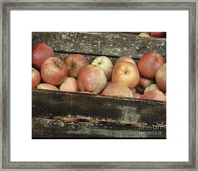 French Market Apples Framed Print