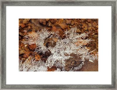 Frozen Beauty Aka Ice Is Nice Viii Framed Print by Bijan Pirnia