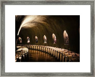 Fruits Of The Vine Framed Print