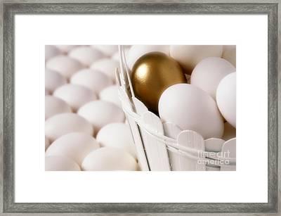 Golden Egg Framed Print