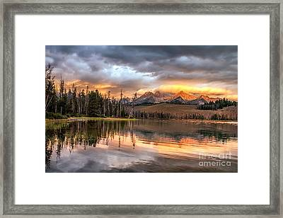Golden Sunrise Framed Print by Robert Bales