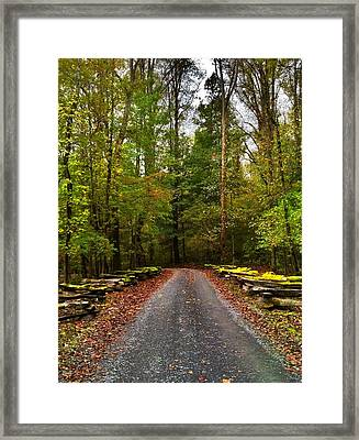 Great Smoky Mountains Framed Print by Janice Spivey