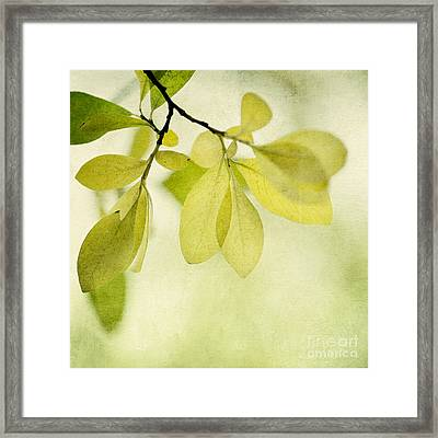 Green Foliage Series Framed Print