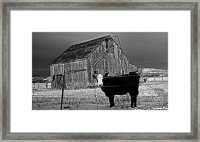 Harney County Oregon Framed Print by Michele AnneLouise Cohen