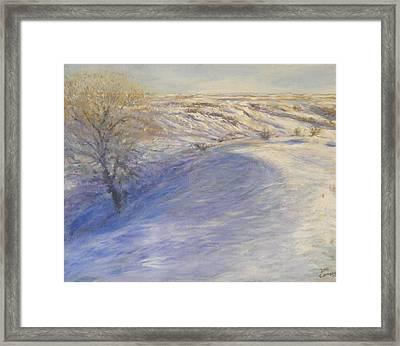Hillside Russian Olive Framed Print by Helen Campbell