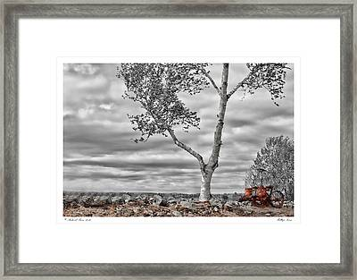 Hilltop Farm Framed Print by Richard Bean