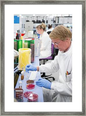 Hospital Pathology Lab Framed Print