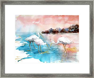 Ibis On The Beach Framed Print by Joyce Allen