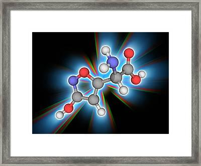 Ibotenic Acid Drug Molecule Framed Print by Laguna Design/science Photo Library