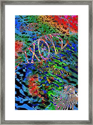 Ichthus Framed Print