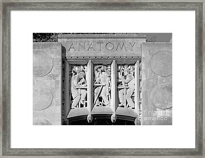 Indiana University Myers Hall Anatomy Framed Print