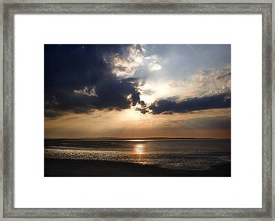 3 Is A Crowd Framed Print by Tony Reddington