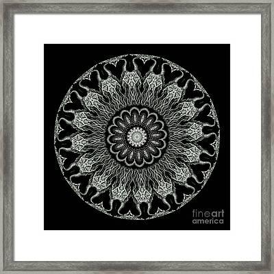 Kaleidoscope Ernst Haeckl Sea Life Series Black And White Set On Framed Print