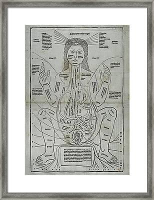 Ketham, Johannes De Second Half 15th Framed Print by Everett