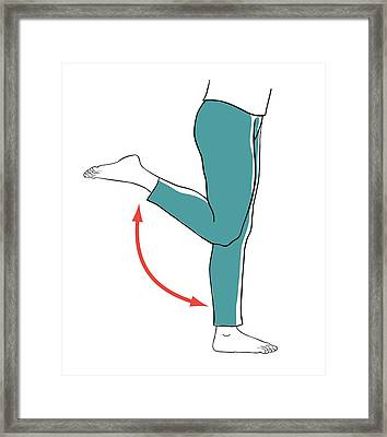 Leg Exercises Framed Print by Jeanette Engqvist