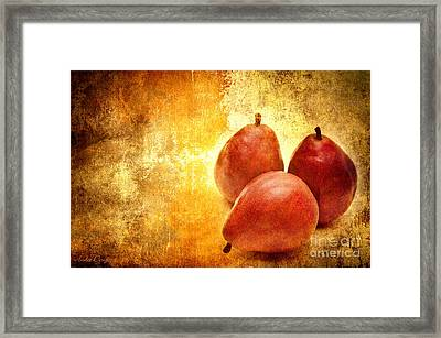 3 Little Red Pears Are We Framed Print