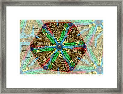 Liver Lobule Framed Print