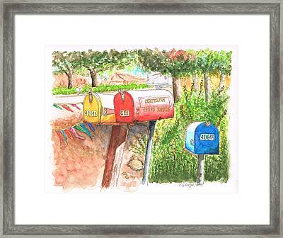 3 Mail Boxes In Three Rivers - California Framed Print by Carlos G Groppa