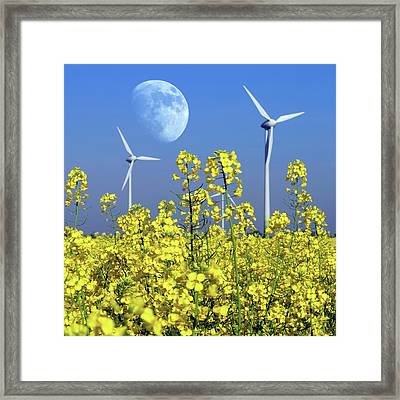 Moon Over Wind Turbines In A Field Framed Print by Detlev Van Ravenswaay