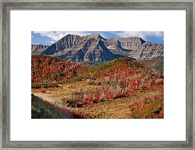 Mount Timpanogos Framed Print